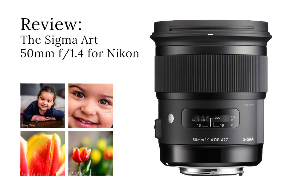 Review: The Sigma Art 50mm f/1.4 for Nikon